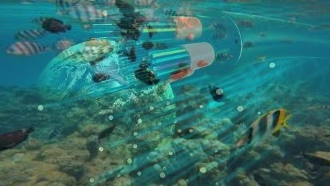 undersea fiber optics