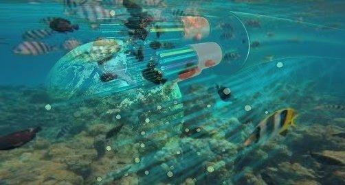 undersea fiber optics