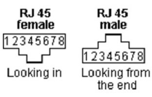 Deciphering Male and Female RJ45 Connector 2