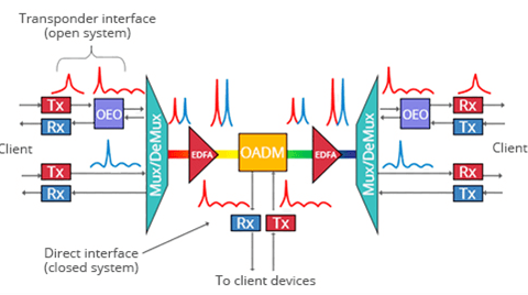 Basics of DWDM Concepts