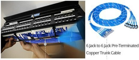 6 Jack to 6 Jack Pre-terminated Copper Trunk Cable.