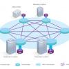VPLS-Network