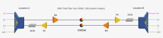 100km DWDM Network