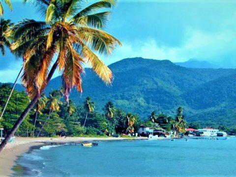 Hammer and Wikibuli Brings Broadband to Dominica 2