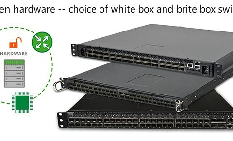 White-box-switch-vs-brite-box-switch